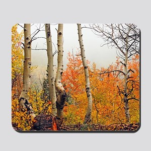Misty Autumn Aspen 2 Mousepad
